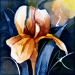 Iris in Shades of Yellow, Watercolor Corel Painter 12