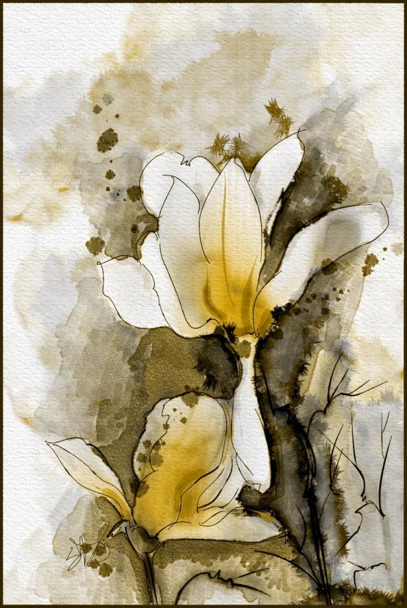 Japanese Magnolia Watercolor   Skip Allen Paints