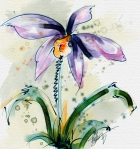 Orchid, Watercolor in Corel Painter 12