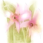 Soft Orchids, Watercolor Corel Painter 12