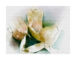 Tulip Poplar Blossoms, Watercolor Corel Painter 12