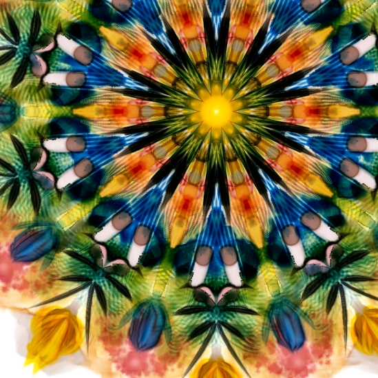 Watercolor blended Kaleidoscope