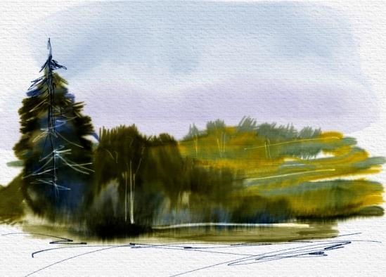 Practice Landscape 1