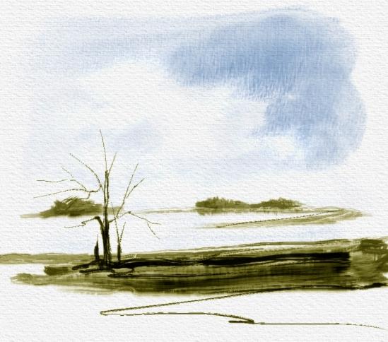 Practice Landscape 2