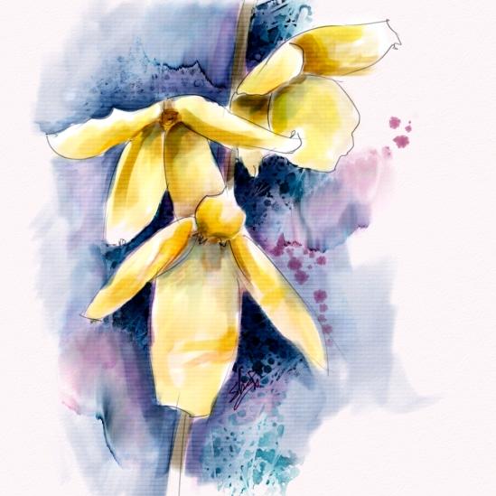 Forsythia Flowers, Corel Painter 12.2, Watercolor