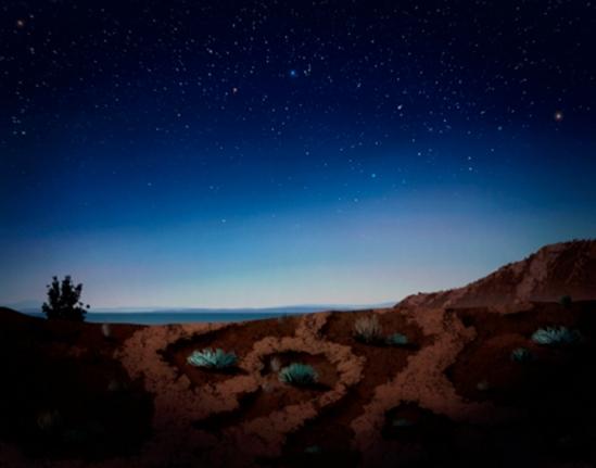 Starry nights in Week 3
