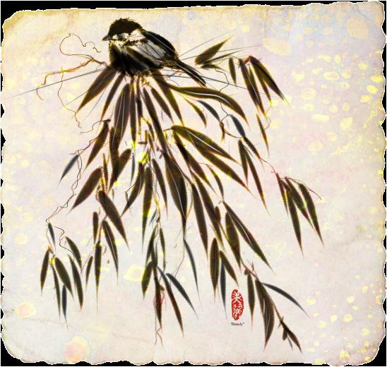 Finch on Bamboo, Karen Bonaker, Corel Painter 2015