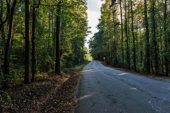 Skip's road, Winston, Georgia