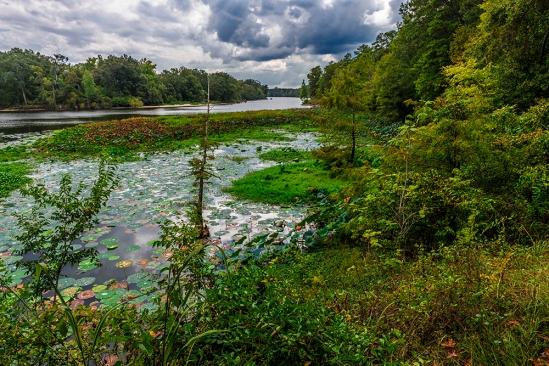 River Bend, Natchez Trace Parkway, Mississippi